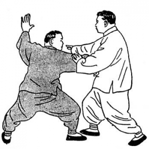 tai-chi-push hands