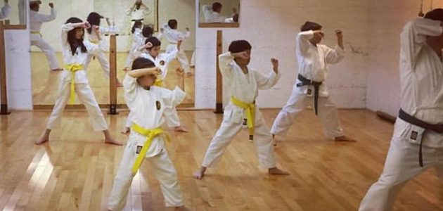 Kids/Parents Traditional Karate