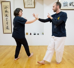 Tai Chi Free Week   Vancouver Traditional Martial Arts Dojo