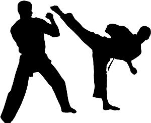 karate silloite