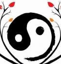 yin yang tree pic